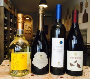 Wines of Vicobarone Winery