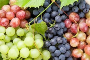 The various color grapes