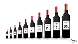 Wine bottles sizes