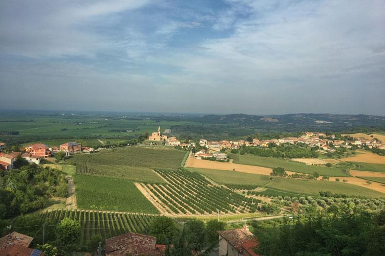 Monferrato Camino