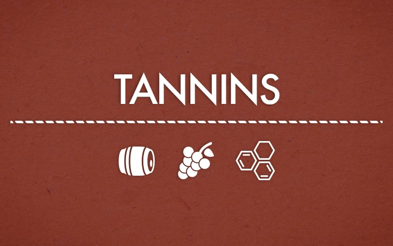 Tannins: what they are and what their functions are