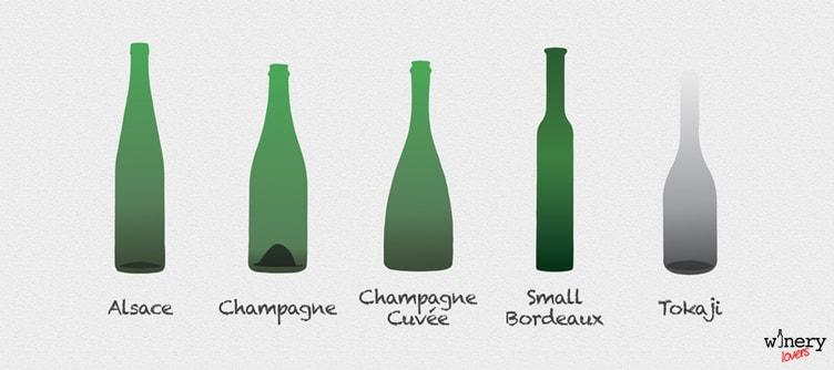 Wine Bottle Shapes Two