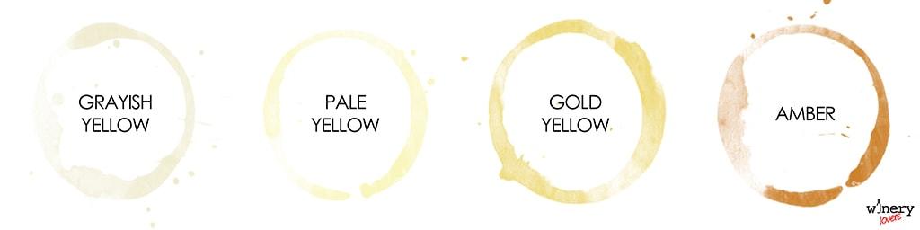 winecolors-white