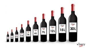 Wine bottles sizes