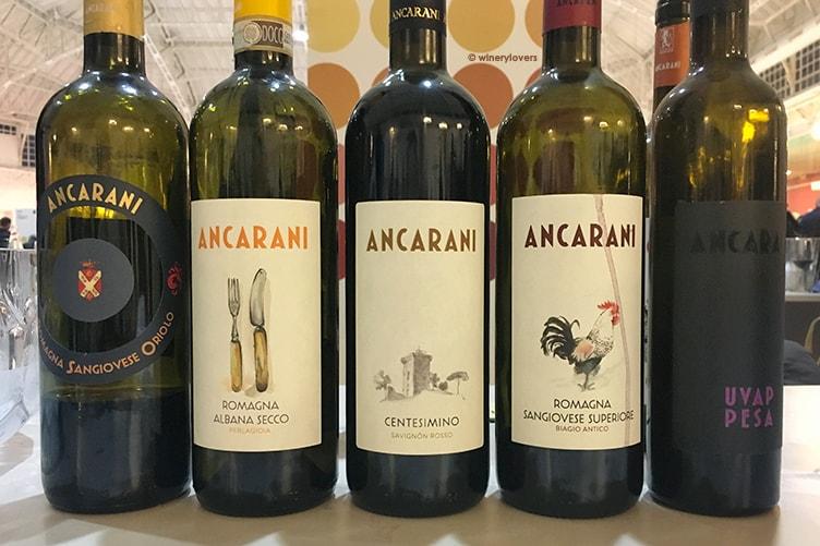 Live Wine 2017 Ancarani