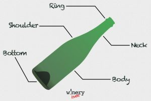 Wine Bottle Shapes Parts