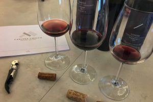 Cascina Chicco Wine Tasting