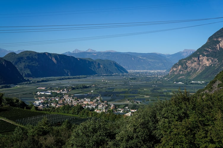 Alto Adige Wine Bolzano