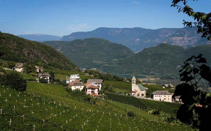 Gewurztraminer Alto Adige Tramin
